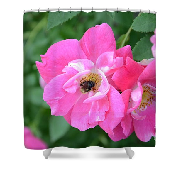 Bee Rosy Shower Curtain