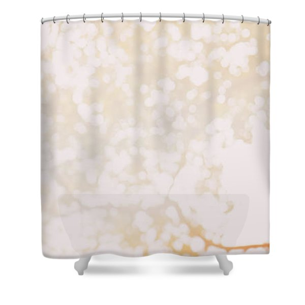 Beneath A Tree 14 4948 Triptych Set 1 Of 3 Shower Curtain