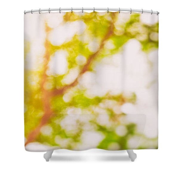 Beneath A Tree  14 5194  Diptych  Set 2 Of 2 Shower Curtain