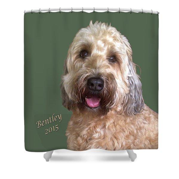 Bentley Shower Curtain