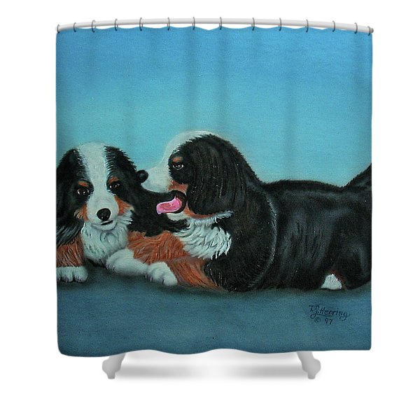 Bernese Mountain Puppies Shower Curtain
