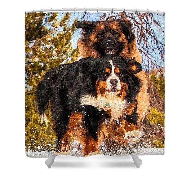 Bernese Mountain Dog And Leonberger Winter Fun Shower Curtain