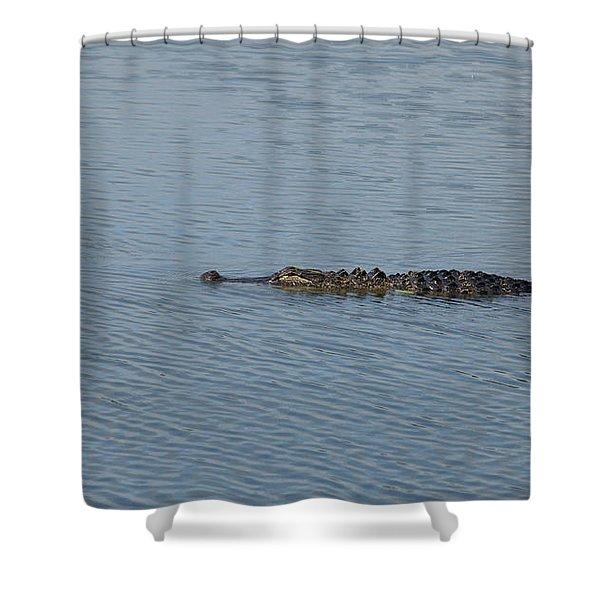 Bffs I Shower Curtain