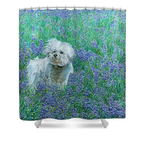 Shower Curtain featuring the drawing Bichon In The Bluebonnets by Dominic White
