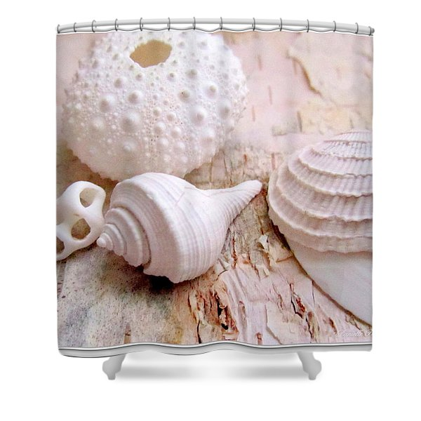 Birch And Shells Shower Curtain