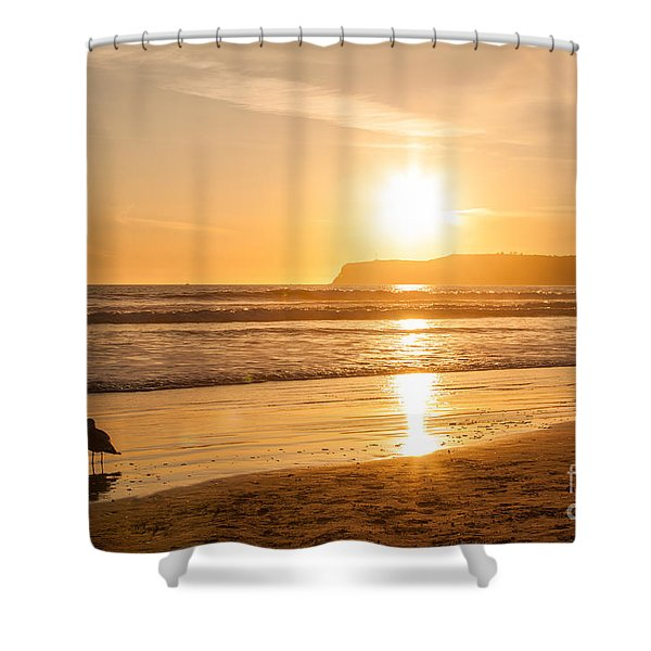 Bird And His Sunset Shower Curtain