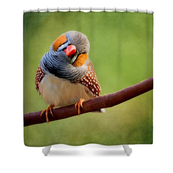 Bird Art - Change Your Opinions Shower Curtain