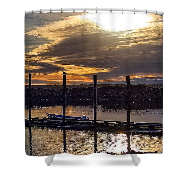 Bird - Boat - Bay Shower Curtain