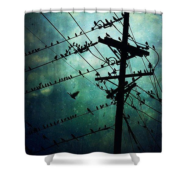Bird City Shower Curtain