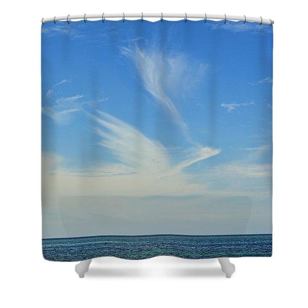 Bird Cloud Shower Curtain