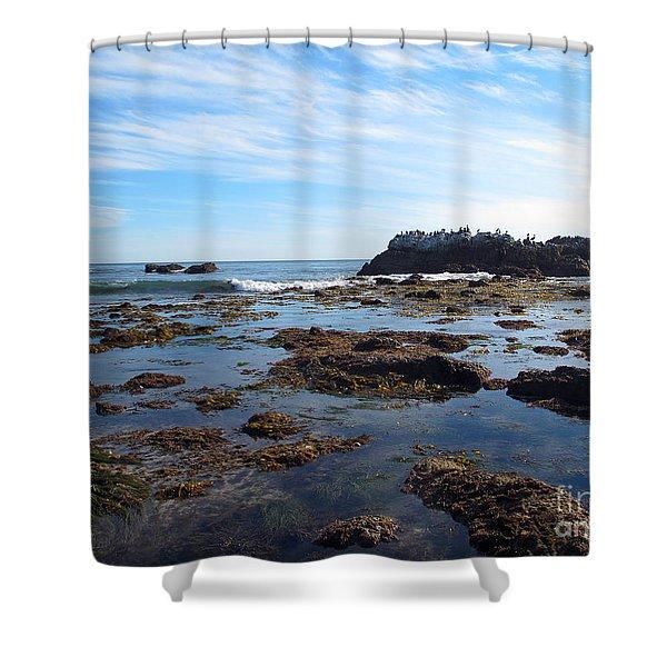 Bird Island Shower Curtain