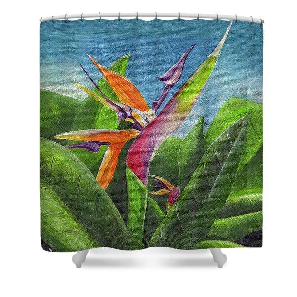 Hawaiian Bird Of Paradise Shower Curtain