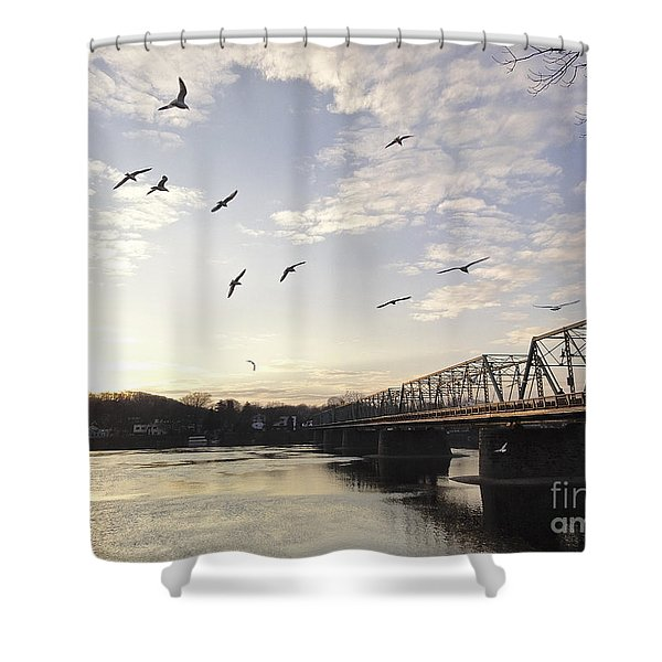 Birds And Bridges Shower Curtain