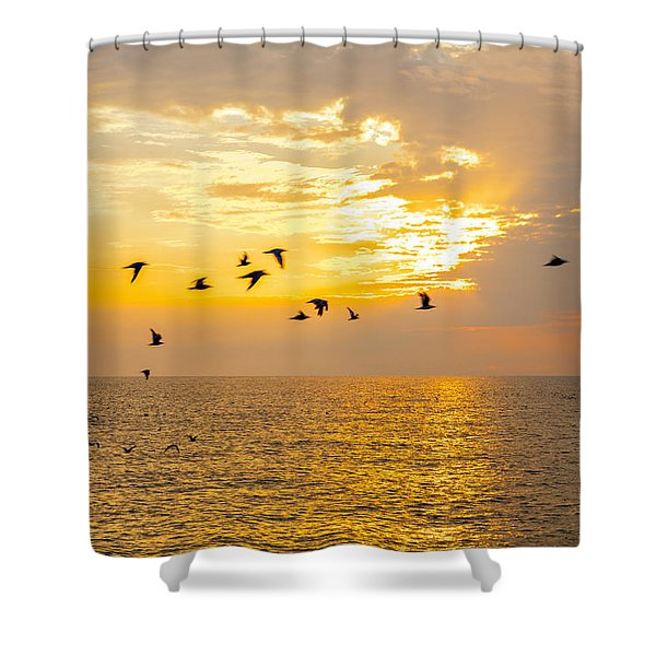Birds In Lake Erie Sunset Shower Curtain