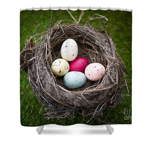 Bird's Nest With Easter Eggs Shower Curtain