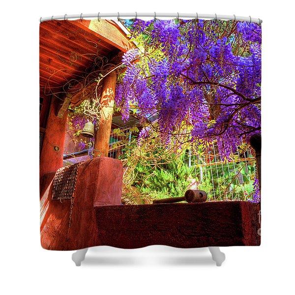 Bisbee Artist Home Shower Curtain