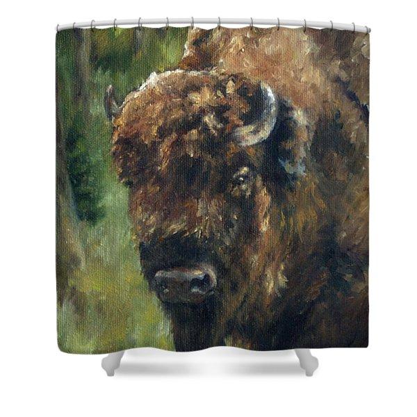 Bison Study - Zero Three Shower Curtain