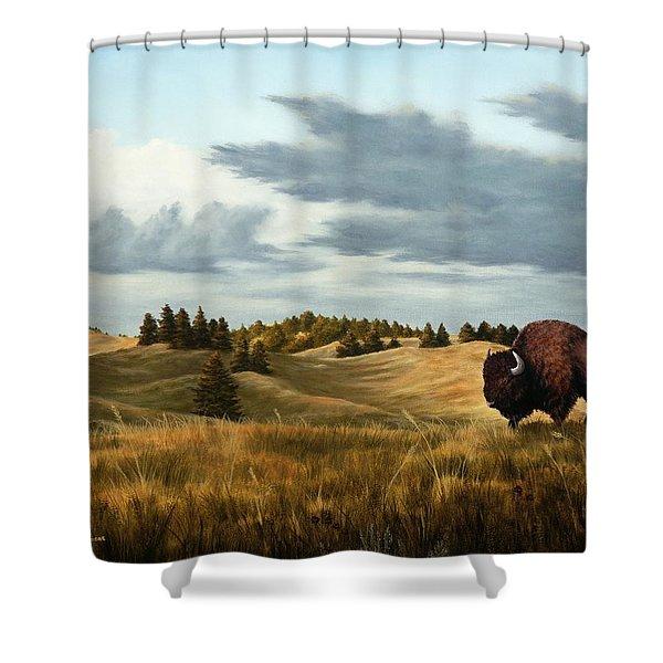 Bison  Wind Cave Park  South Dakota Shower Curtain