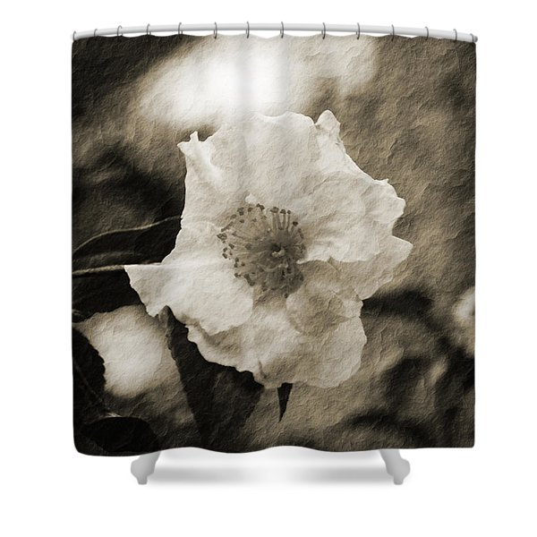 Black And White Flower With Texture Shower Curtain