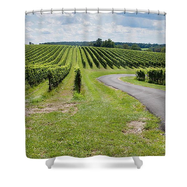 Maryland Vinyard In August Shower Curtain
