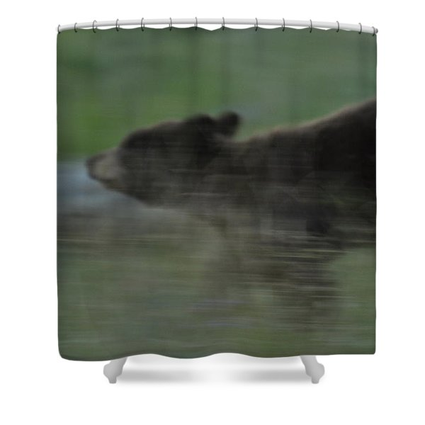 Black Bear Cub Shower Curtain