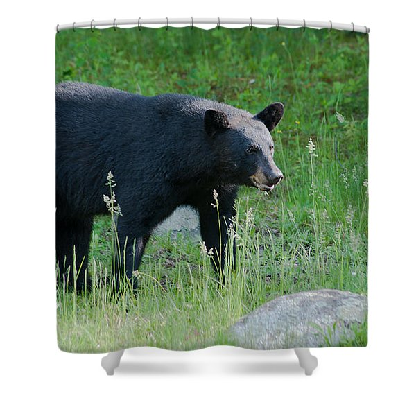 Black Bear Female Shower Curtain