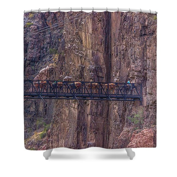Black Bridge In The Grand Canyon Shower Curtain