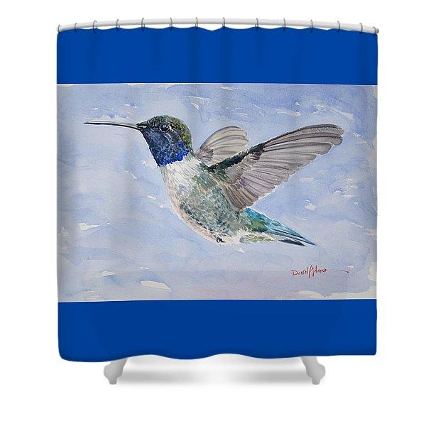 Da194 Black Chinned Hummingbird By Daniel Adams Shower Curtain