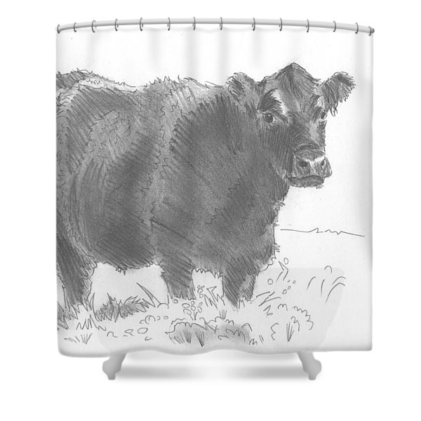 Black Cow Pencil Sketch Shower Curtain