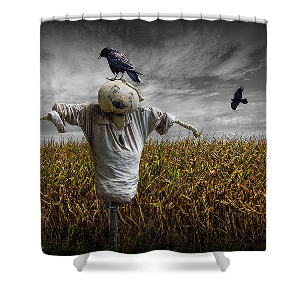 Black Crows Over A Cornfield With Scarecrow And Gray Sky Shower Curtain