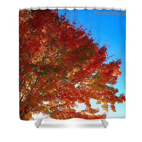 Blazing Orange Maple Tree Shower Curtain