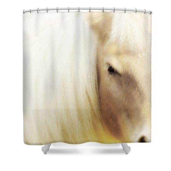 Blondie Shower Curtain