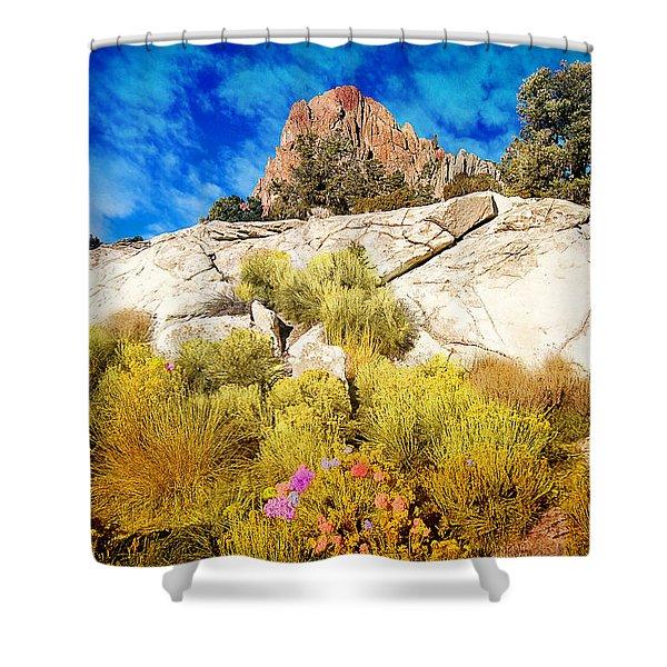 Shower Curtain featuring the photograph Blooming Nevada Desert Near Ely by Gunter Nezhoda