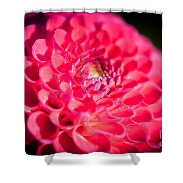 Shower Curtain featuring the photograph Blooming Red Flower by John Wadleigh