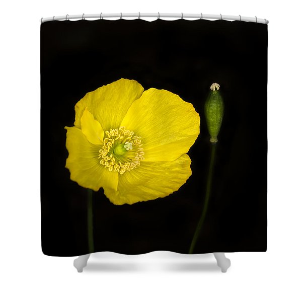 Blossoming Kiss Shower Curtain