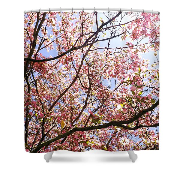Blossoming Pink Shower Curtain
