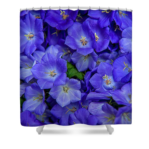 Blue Bells Carpet. Amsterdam Floral Market Shower Curtain