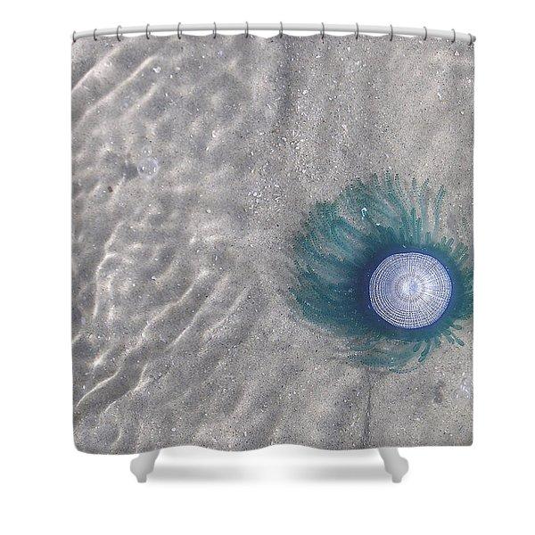 Blue Button Jellyfish Shower Curtain