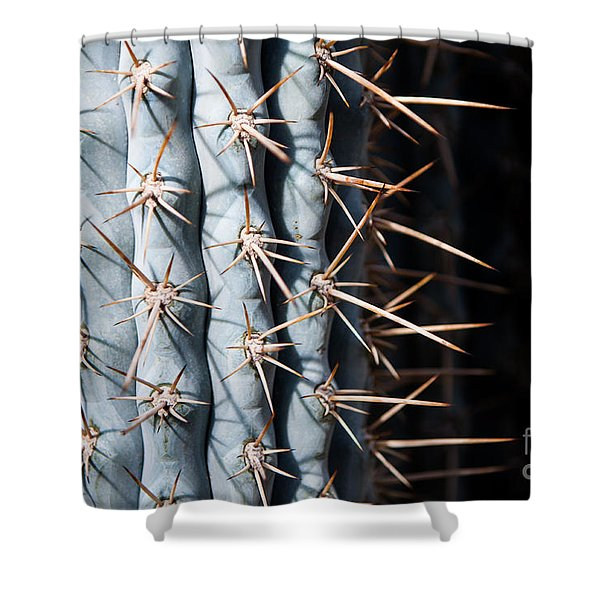 Shower Curtain featuring the photograph Blue Cactus by John Wadleigh