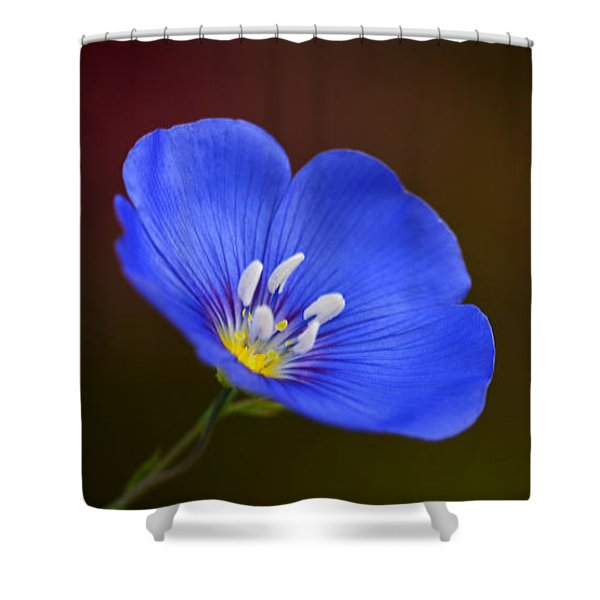 Blue Flax Blossom Shower Curtain