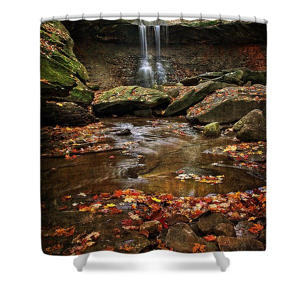 Blue Hen Falls In Autumn Shower Curtain