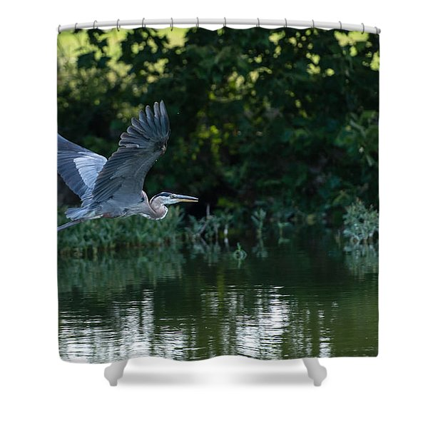 Blue Heron Take-off Shower Curtain