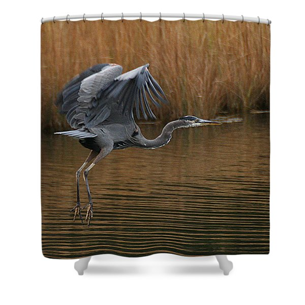 Blue Heron Takes Flight Shower Curtain