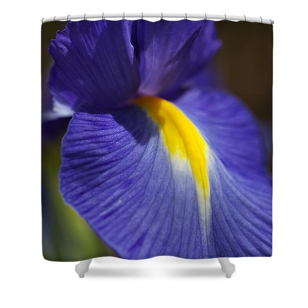 Blue Iris With Yellow Shower Curtain