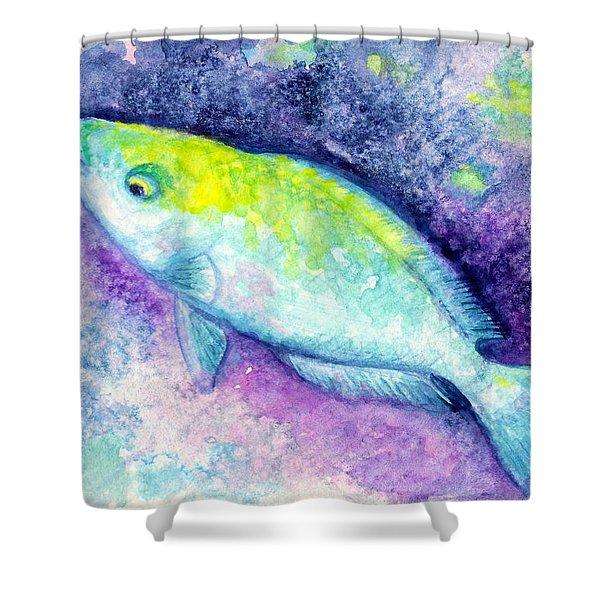 Blue Parrotfish Shower Curtain