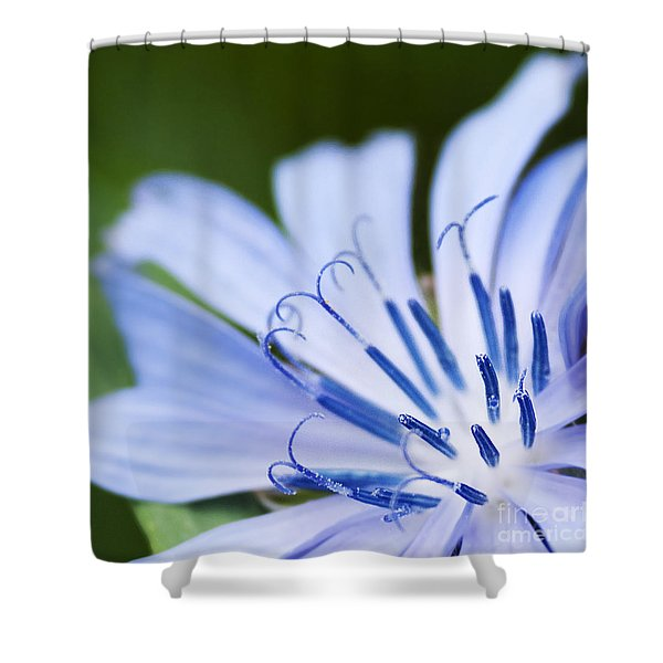 Blue Poetry.. Shower Curtain
