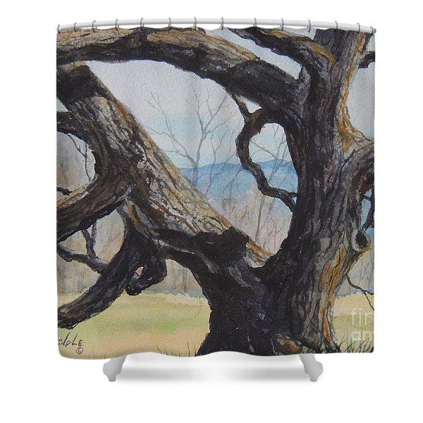 Blue Ridge Memories...sold Shower Curtain