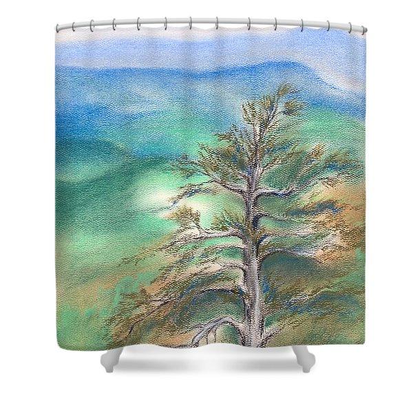 Blue Ridge Pine Shower Curtain