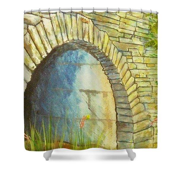 Blue Ridge Tunnel Shower Curtain