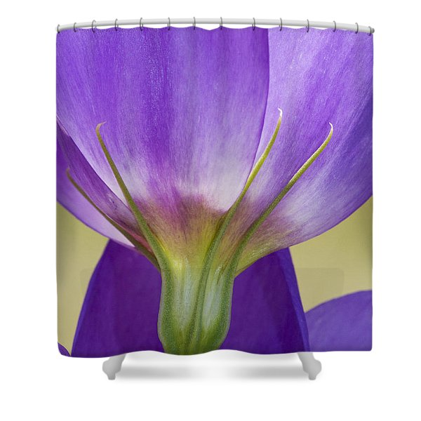 Bluebell Gentian Flower Shower Curtain